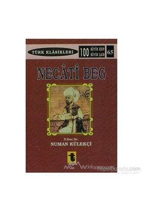 Necati Beg-Numan Külekçi
