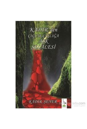 Kadirden Çığlık Çığlığa Aşk Şelalesi-Kadir Şener