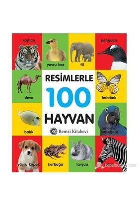 Resimlerle 100 Hayvan (Küçük Boy)-Kolektif