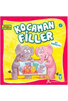 Kocaman Filler-Kolektif