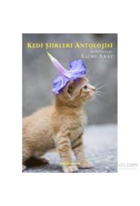 Kedi Şiirleri Antolojisi-Kolektif