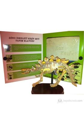 Yeni Büyük Boy Dinozor İskeleti - Sergileme Altlıklı
