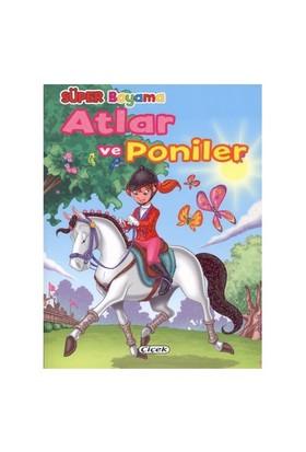 Çiçek Atlar Ve Poniler 2