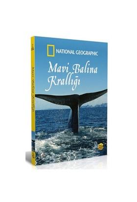 National Geographic: Mavi Balina Krallığı