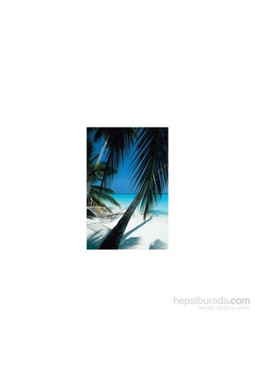 Maxi Poster Palm view