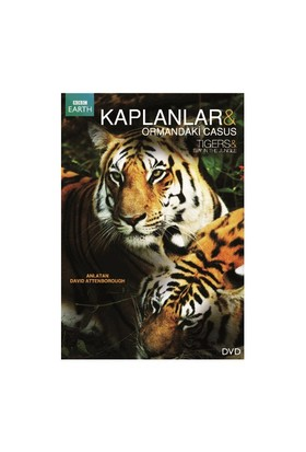 Tigers: Spy In The Jungle (Kaplanlar: Ormandaki Casus)