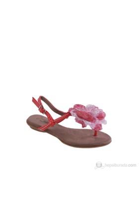 Queen Bee Kadın Sandalet Xx001-8K1697-9