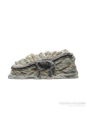 Hagen Marina Dekoratif Fosil Brontosaurus