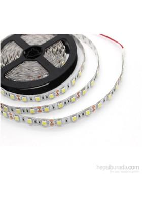 Noa Led 3 Çip 60 Led İç Mekan Gün Işığı Şerit Led Double Pcb 5 Metre