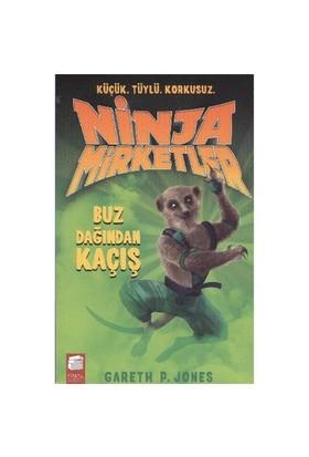 Ninja Mirketler 3 Buz Dağından Kaçış-Gareth P. Jones