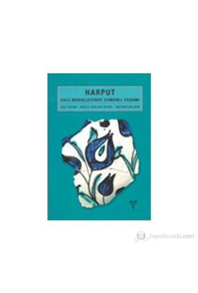 Harput. Kale Mahallesinde Osmanlı Yaşamı-Veli Sevin