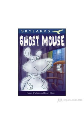 Ghost Mouse (A1)-Karen Wallace