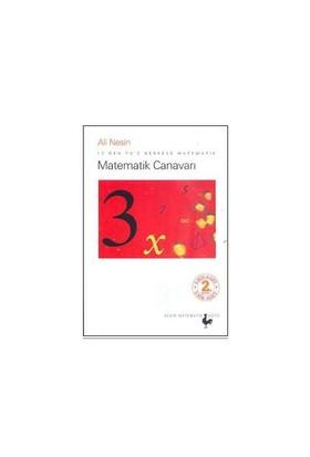 Matematik Canavarı - 12'den 70'e Herkese Matematik - Ali Nesin