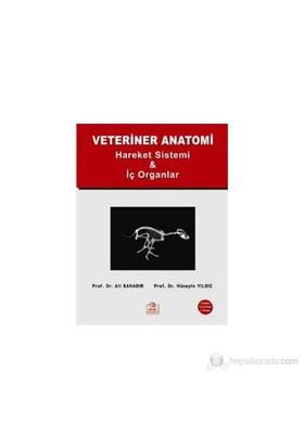 Veteriner Anatomi - (Hareket Sistemi ve İç Organlar) - Ali Bahadır