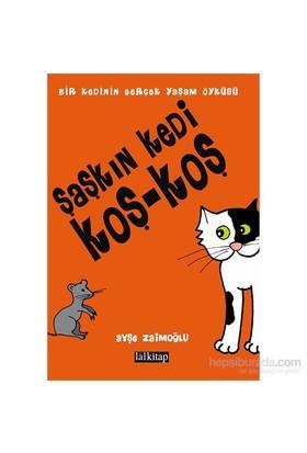 Şaşkın Kedi Koş-Koş