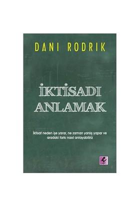 İktisadı Anlamak - Dani Rodrik
