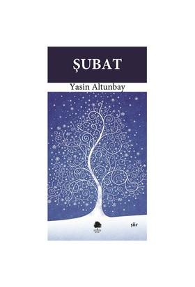 Şubat-Yasin Altunbay