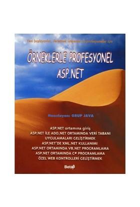 Örneklerle Profesyonel Asp.net