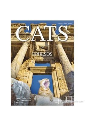 Cats Of Ephesos-Lois Lammerhuber