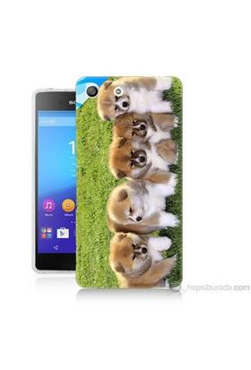 Teknomeg Sony Xperia M5 Kapak Kılıf Sevimli Köpek Baskılı Silikon