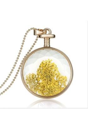 Güven Altın Yaşayan Kolye Kristal Cam İçinde Kurutulmuş Çiçekler Yk2
