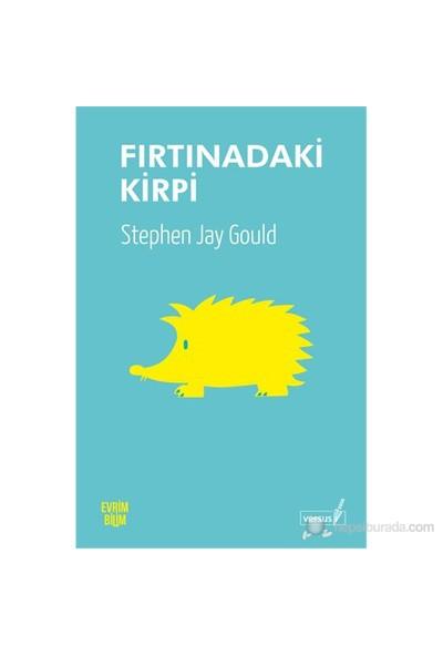 Fırtınadaki Kirpi-Stephen Jay Gould