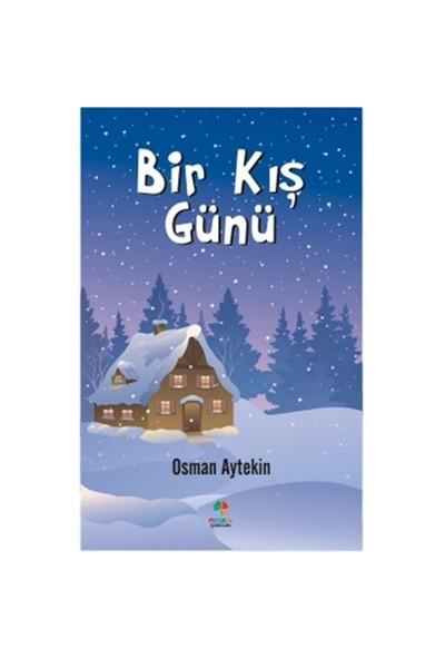 Bir Kış Günü-Osman Aytekin