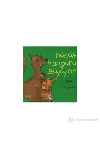 Küçük Kanguru Büyüyor-Koray Avcı Çakman