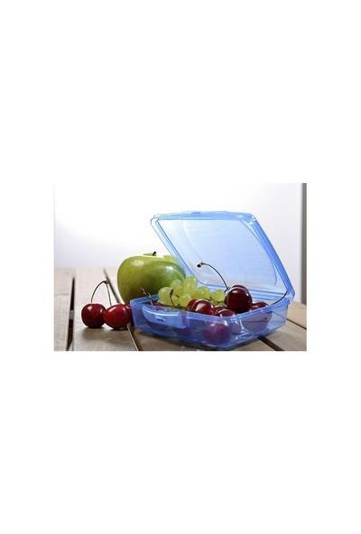 Aroni Takeaway Beslenme Kutusu - Saklama Kabı 550 ML