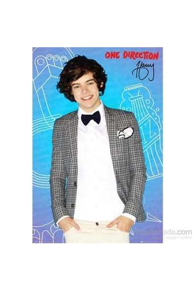 One Direction Harry Pop Maxi Poster