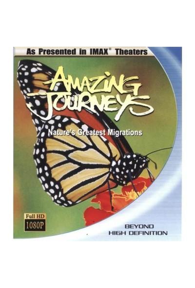 Amazing Journeys (Şaşırtıcı Yolculuk) (Blu-Ray Disc)