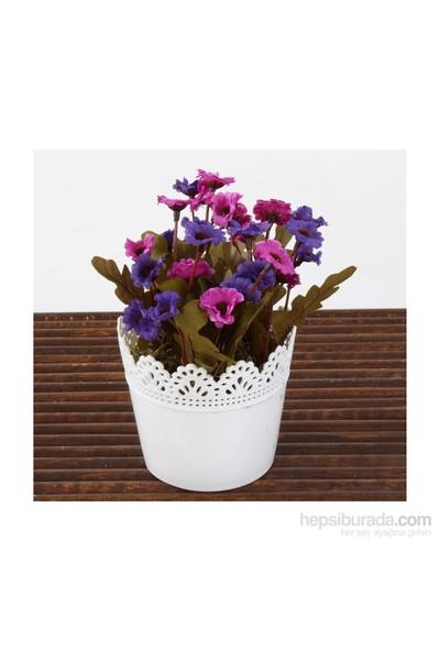 Mary Case Saksılı Yapay Çiçek 649D Papatya Lila-Mor