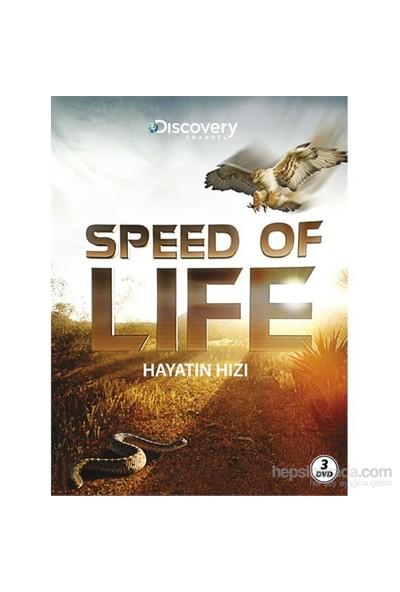 Speed of Life (Hayatın Hızı) (DVD)