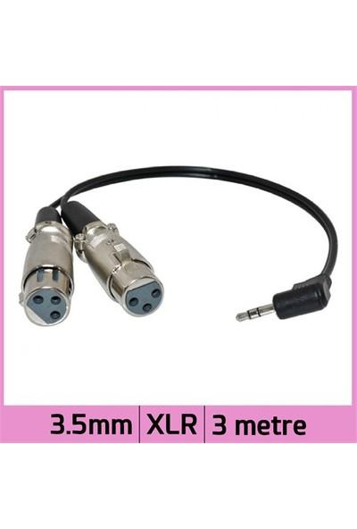Ti-Mesh Sağ/Dik Açılı 3.5Mm Mini Stereo 2 Xlr Dişi Y Ses Kablosu - Siyah - 3M
