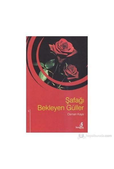 Şafağı Bekleyen Güller-Osman Kaya