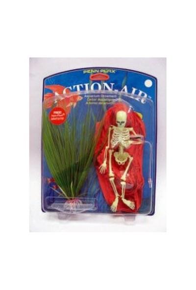 Hareketli İskelet + Plastik Bitki