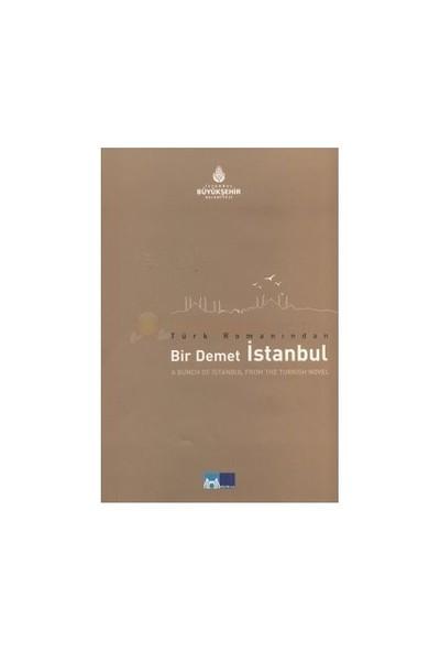 Türk Romanından Bir Demet İstanbul-Kolektif