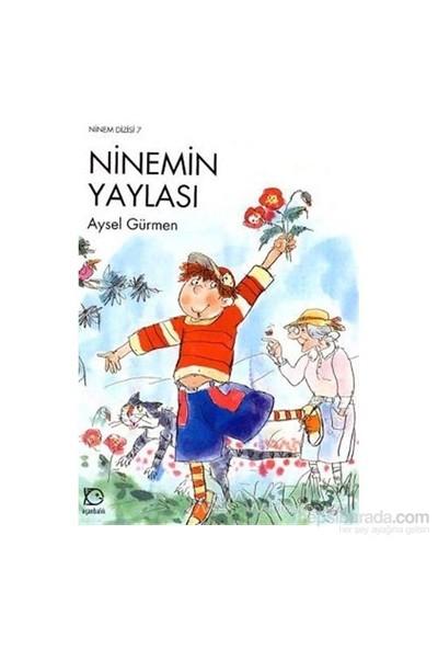 Ninemin Yaylası-Aysel Gürmen