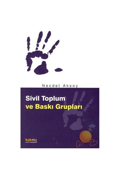 Sivil Toplum Ve Baskı Grupları