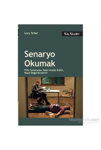 Senaryo Okumak - Film Senaryosu Nasıl Analiz Edilir, Nasıl Değerlendirilir - Lucy Scher