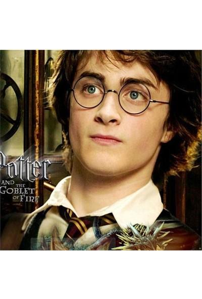 Köstebek Harry Potter Black Gözlük