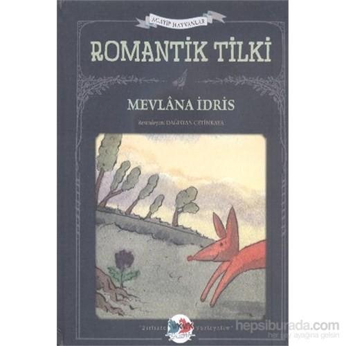 Acayip Hayvanlar-Romantik Tilki-Mevlana İdris
