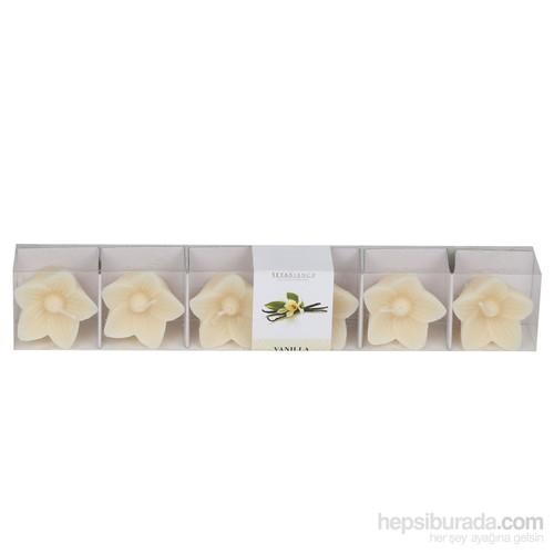 Hepsi Dahice Aroma Mum Kokulu Minik 6'Lı Vanilla