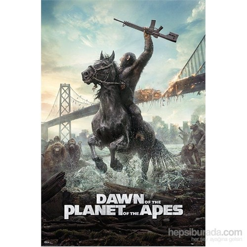 Maxi Poster Dawn Of The Planet Of The Apes (Horse)