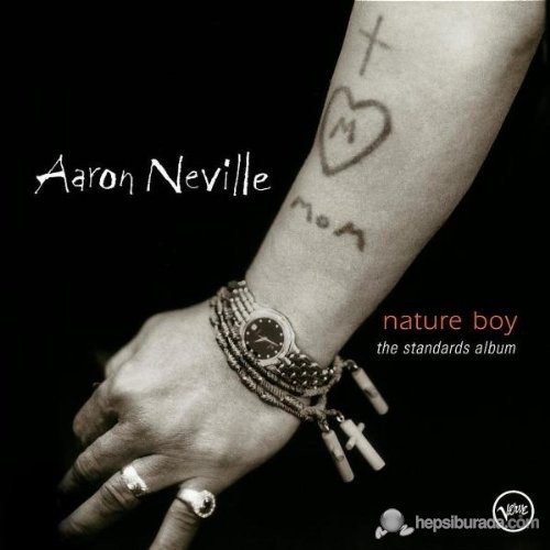 Aaron Nevılle - Nature Boy The Standarts Album