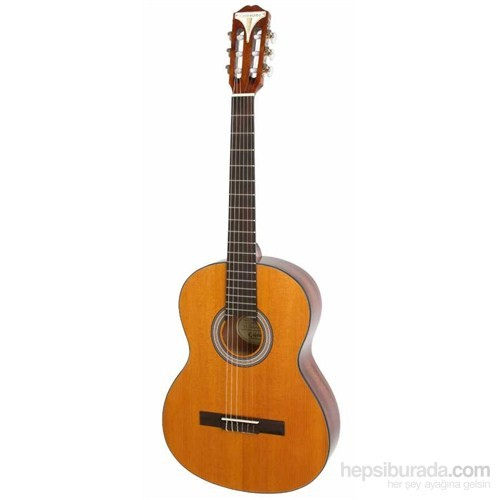 Epiphone Pro-1 Klasik Gitar