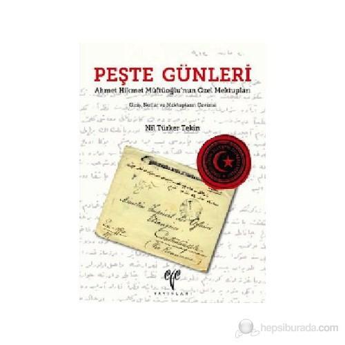 Peşte Günleri - (Ahmet Hikmet Müftüoğlu'nun Özel Mektupları-Giriş, Notlar ve Mektupların Çevirisi)
