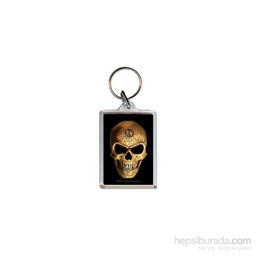 Alchemy Omega Skull PK5365 Akrilik Anahtarlık