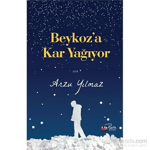 Beykoz'A Kar Yağıyor-Arzu Yılmaz