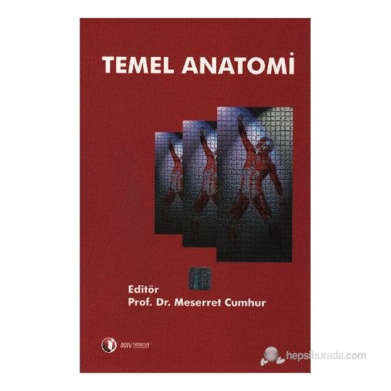 Temel Anatomi - Meserret Cumhur